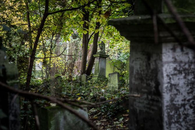 Stoke Newington and Abney Cemetery