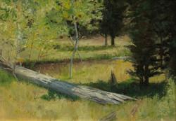 Login Forest