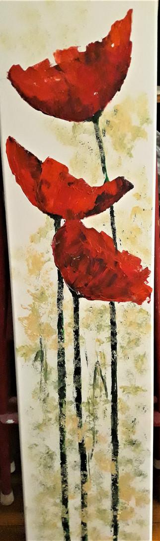 in tall poppy II