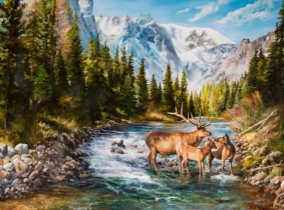 Elk Stream