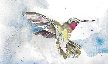 Dancing Hummingbird