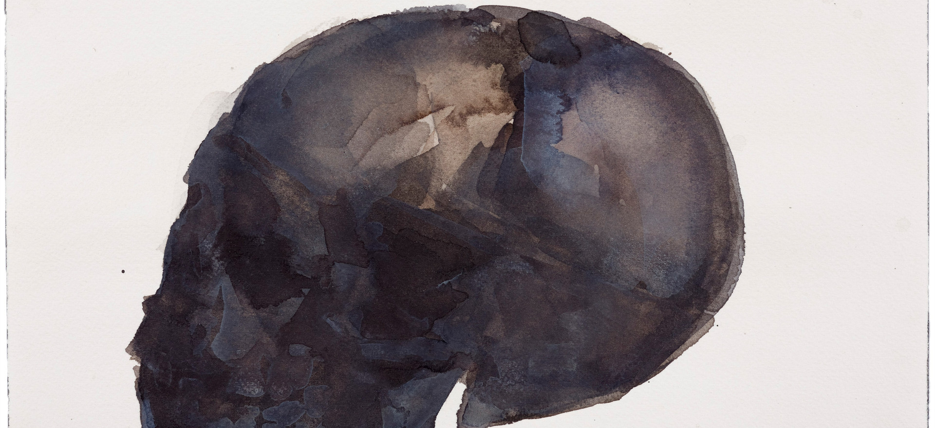 'Skull Series', 2013, watercolour on paper, 15 x 30 cm