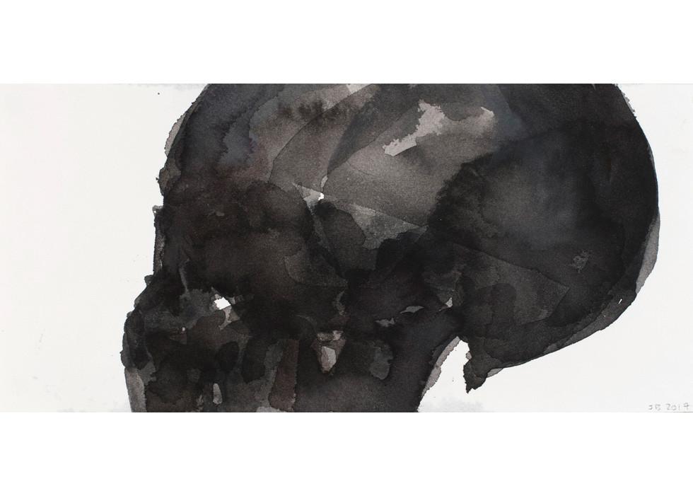 'Skull Series', 2017, watercolour on paper, 13.5 x 29 cm
