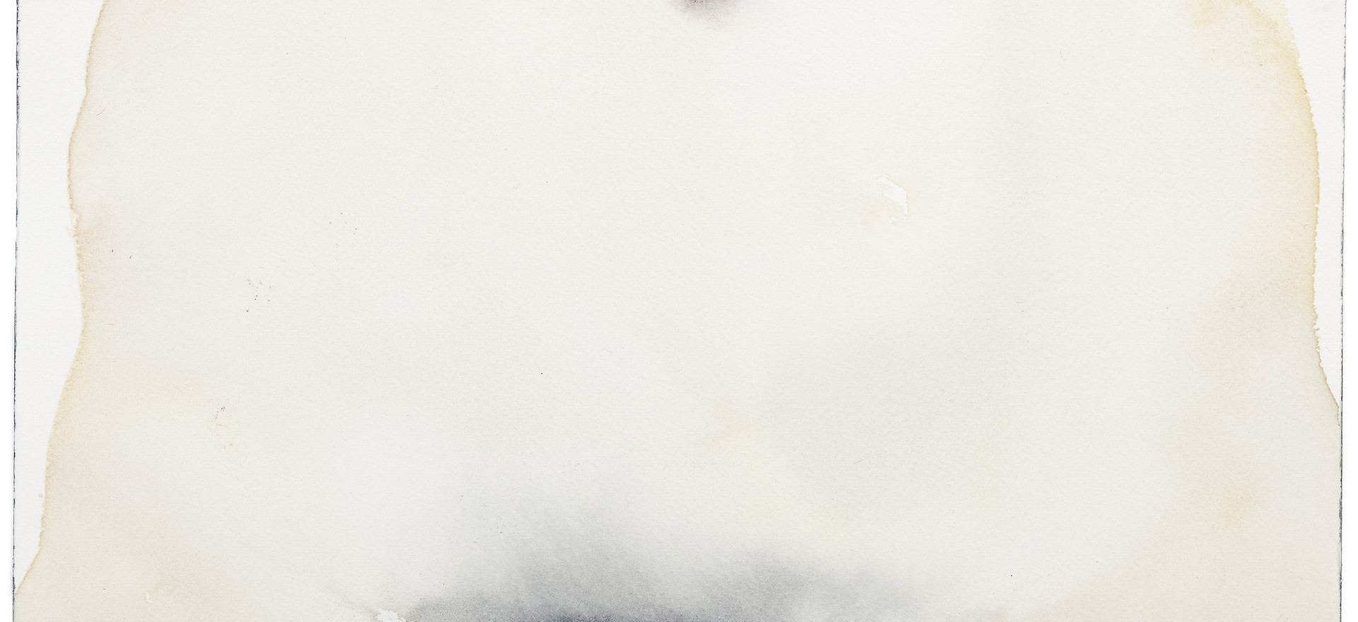 'Navel Series', 2012, watercolour on paper, 15 x 30 cm