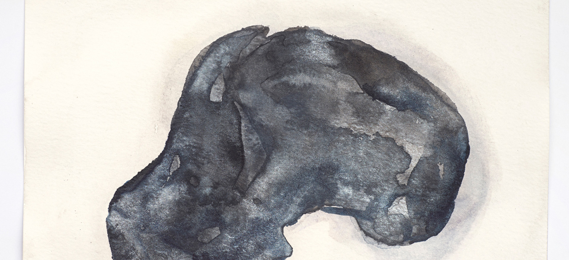 'Skull Series (Taung)', 2014, watercolour on paper