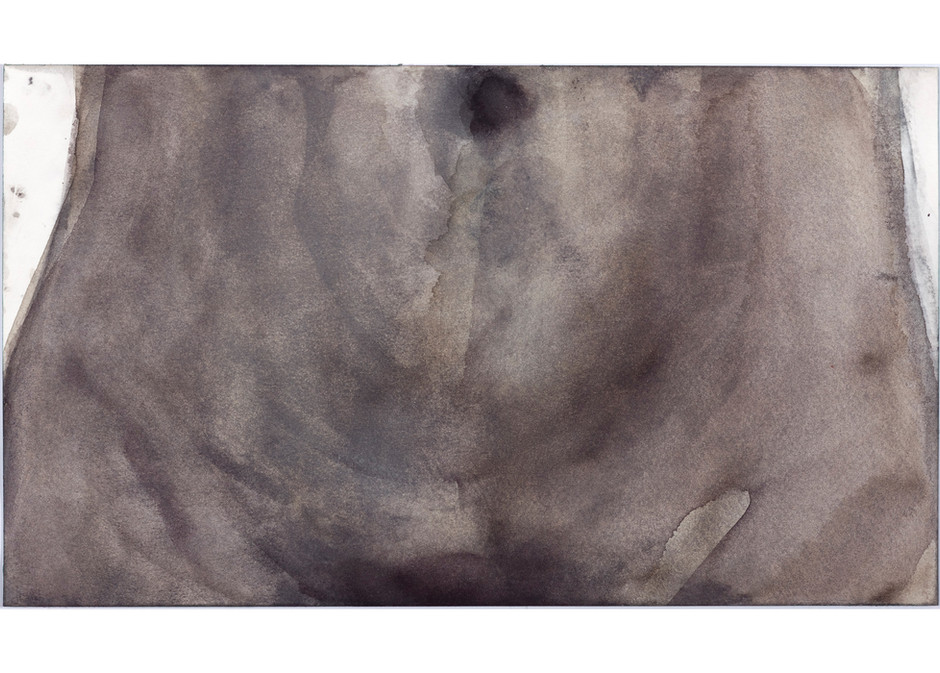 'Navel Series', 2017, watercolour on paper, 21 x 35 cm