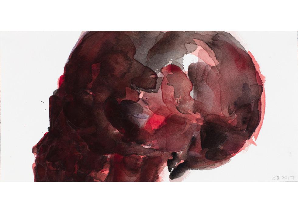 'Skull Series', 2017, watercolour on paper, 15 x 30 cm