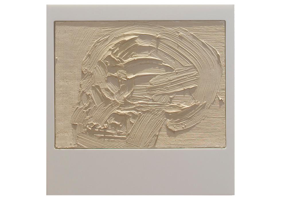 'Crani II', 2007, oil on canvas, Perspex, 23 x 22 x 4.5 cm