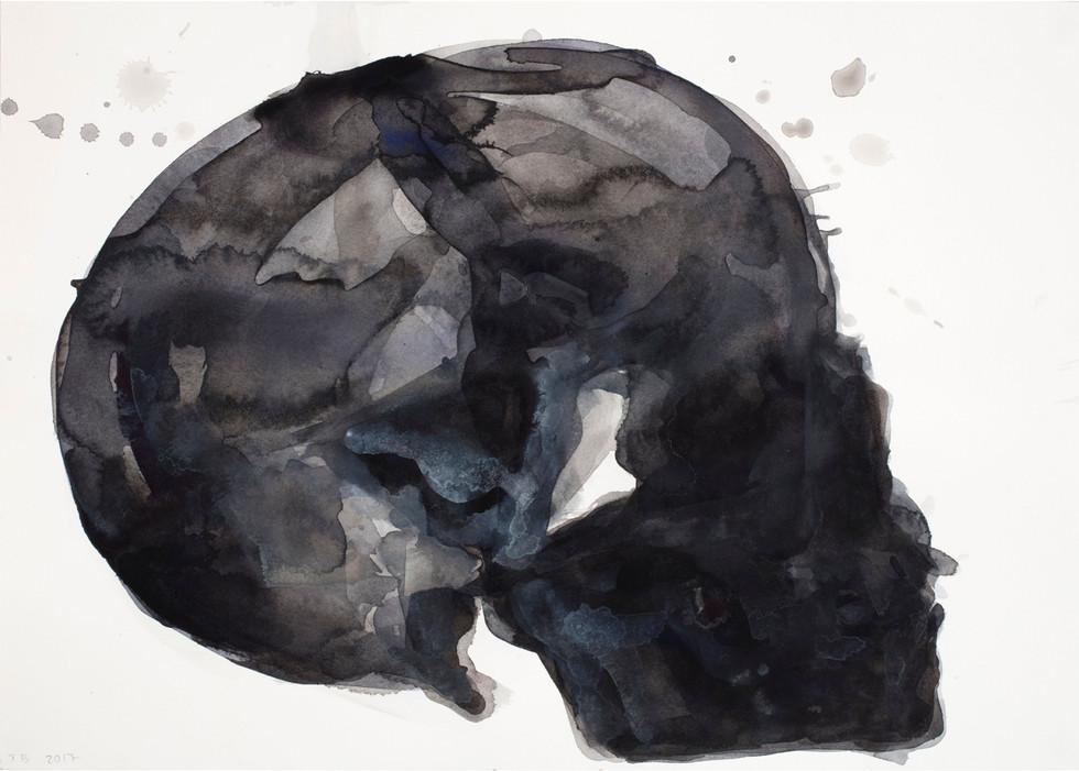 'Skull Series', 2017, watercolour on paper, 36 x 51 cm