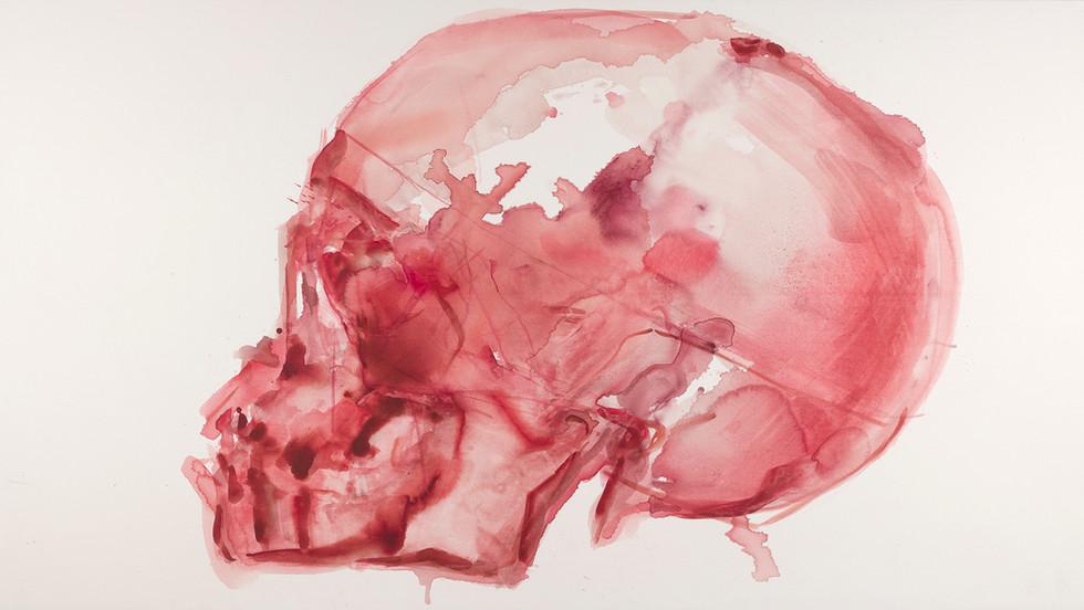 'Rosaceus', 2019, watercolour on canvas, 133 x 230 cm