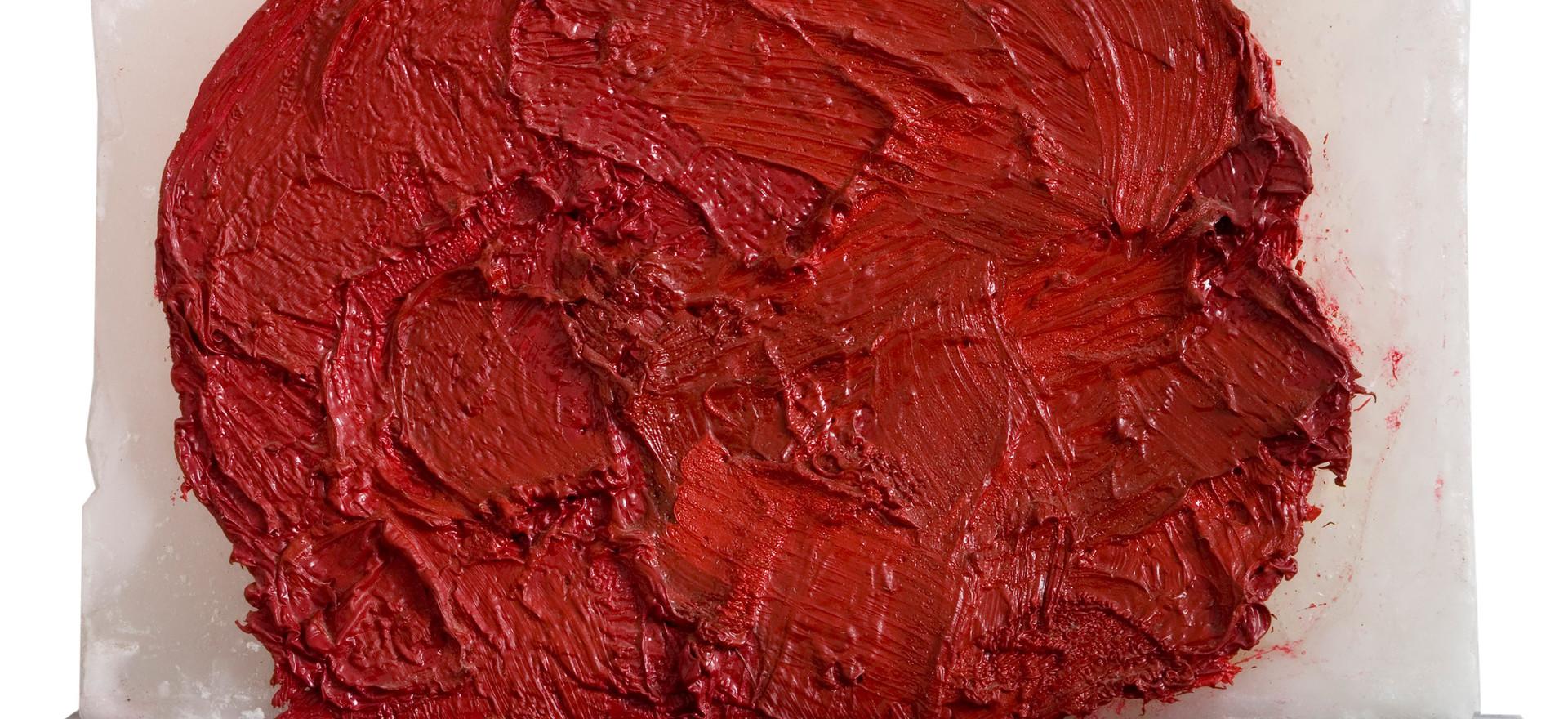 'Penetrant', 2008, oil on wax, 20 x 33 x 3 cm