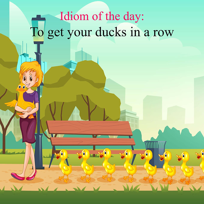 To get your ducks in a row