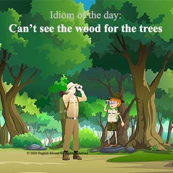 th-can't_see_the_wood_for_the_trees.jp