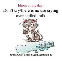 Don't cry/there is no use crying over spilled milk