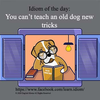 th-You_can't_teach_an_old_dog_new_tric