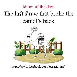 The last straw that broke the camel's back