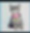 ücretsiz kedi sahiplendirme ilanları arasında üçüncü sıradaki ikon