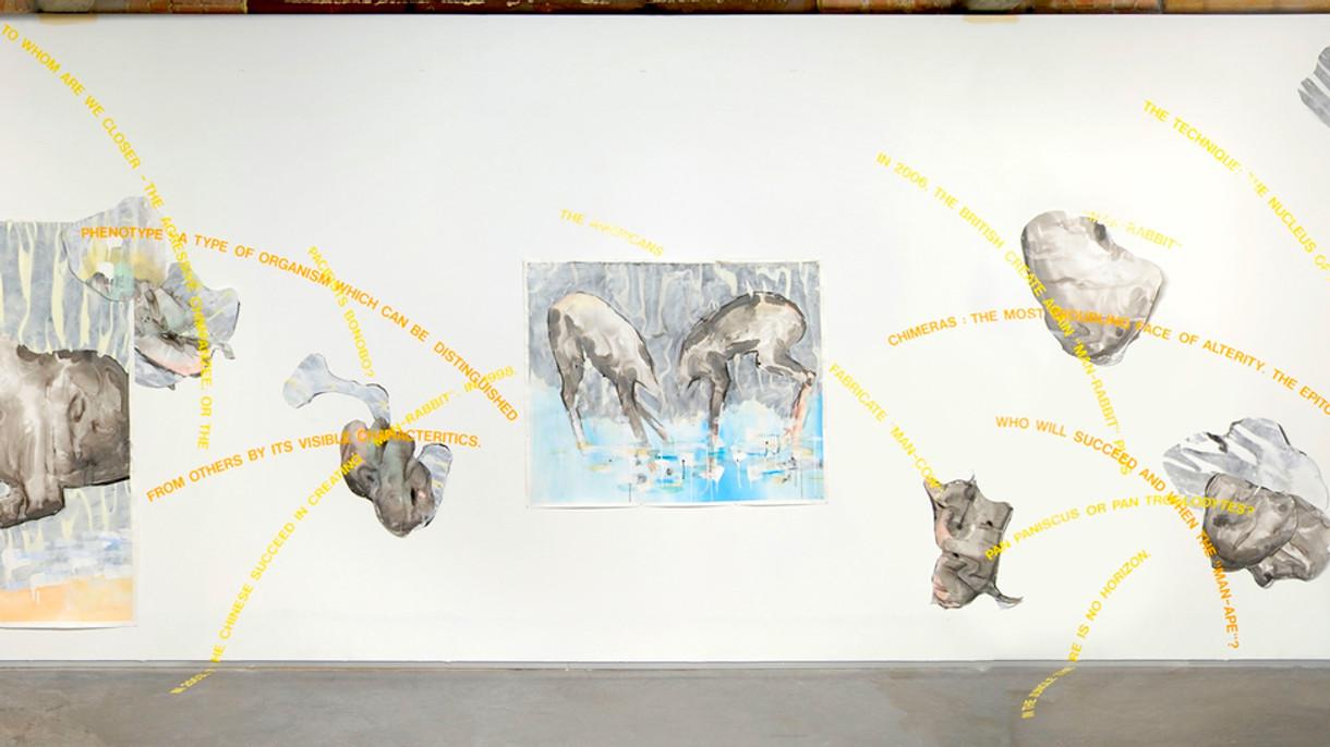 "Wall-installation ""Chimera"""