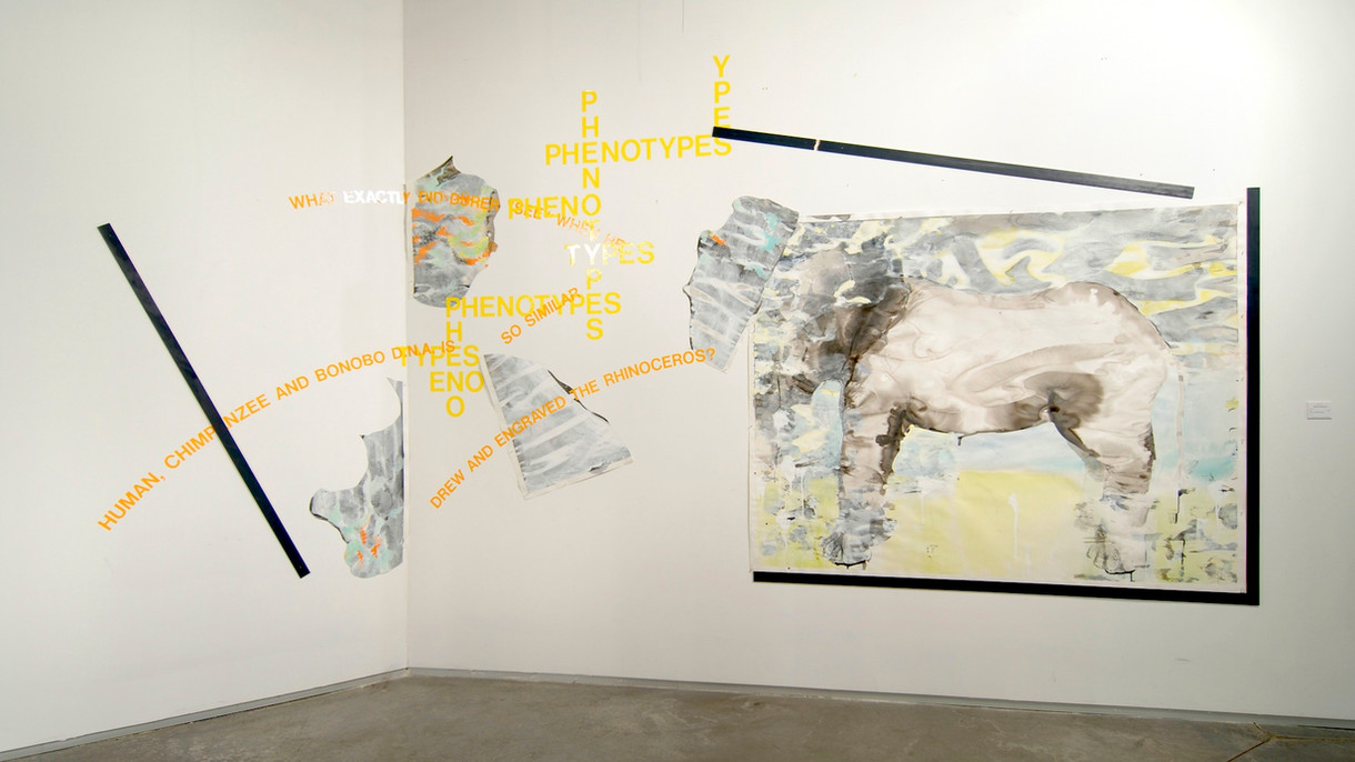 "Wall installation ""Chimera"""