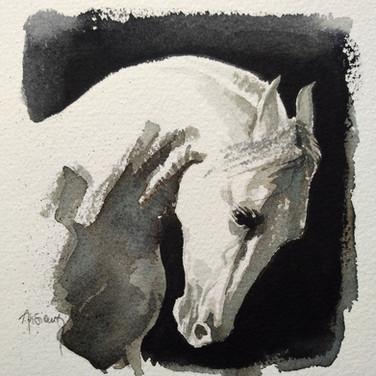 Sonia Ansiaux - aquarelle sur papier Arches grain fin - 13x13