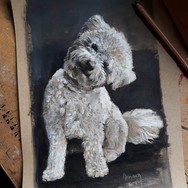 Sonia Ansiaux - crayon gras, crayon aquarellable et acrylique sur papier Dorée Pastellblock - 30x20