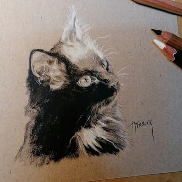 Sonia Ansiaux - Clément - crayon gras, crayon posca blanc et acrylique sur papier Dorée Pastellblock - 10x10