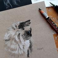 Sonia Ansiaux - Cook, dit Cooki - crayon aquarellable et pastel blanc sur papier Dorée Pastellblock - 10x10