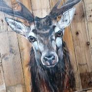 Cerf - détail, acrylique sur bois de palette 102x81 - juin 2021