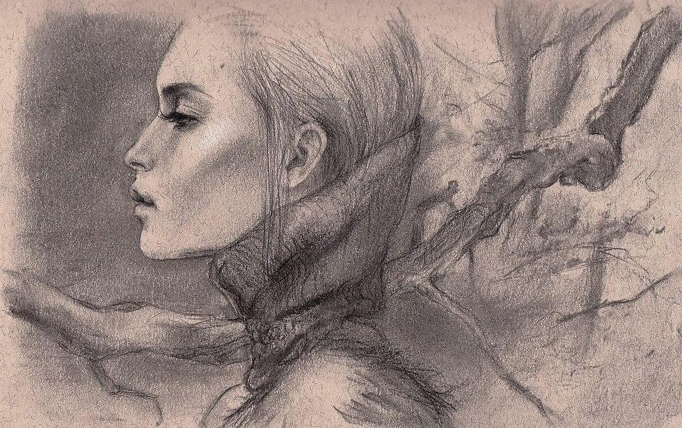Sonia Ansiaux - fusain et graphite sur p