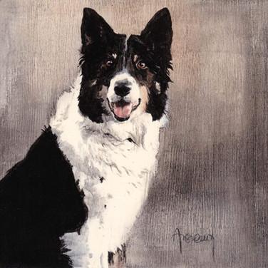 Sonia Ansiaux - Shana, mon chien - acrylique sur panneau de bois 18mm - 15x15