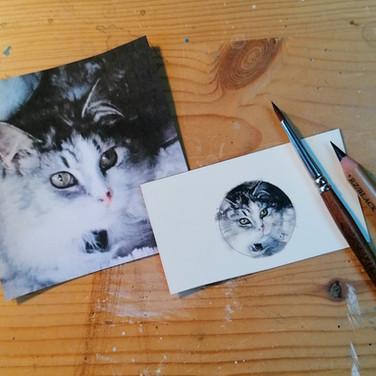 Sonia Ansiaux - Cancrelune - médaillon acrylique et crayon gras sur papier Arches satiné