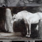 Acrylique 13x25 : à partir de 175€