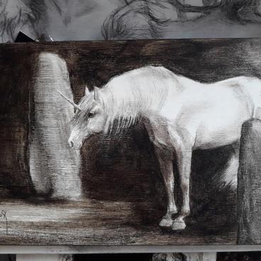 Acrylique 13x25 : à partir de 170€