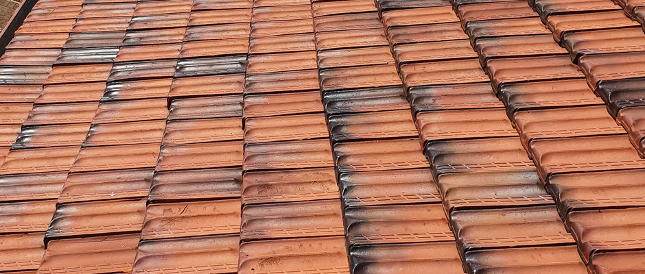 Roof clean (after)