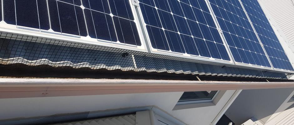 Solar panel animal mesh
