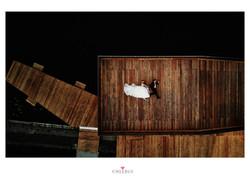 Chlebus Fotografia Sesja Plenerowa