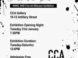 Art 14 Exhibition: Centre for Contemporary Art CCA Derry - Jan 2014