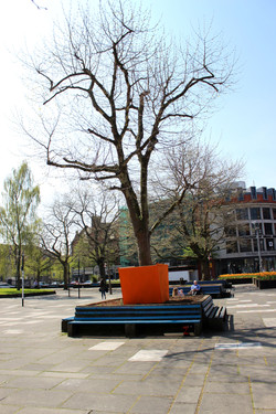 Not Afraid of Ruins: Beuys Park
