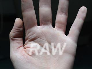RAW   Members Show   2016