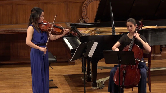 Mozart Duo for Violin and Viola (arr. for Viola and Cello), K. 423