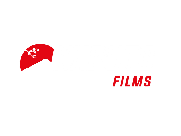 kabutofondotransparente-01.png