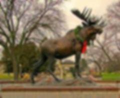 moose heart moose.jpg