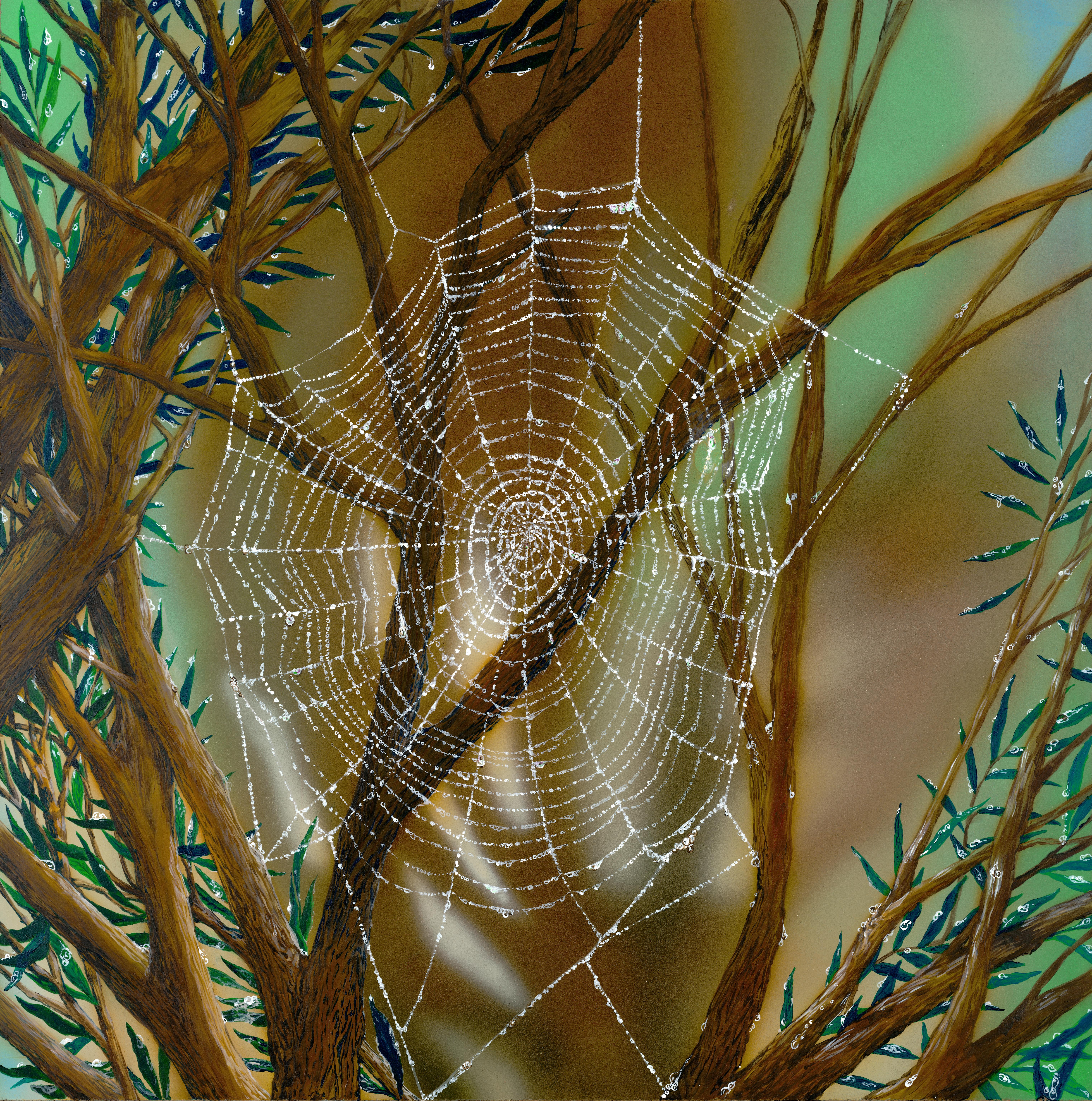 Sam's Web