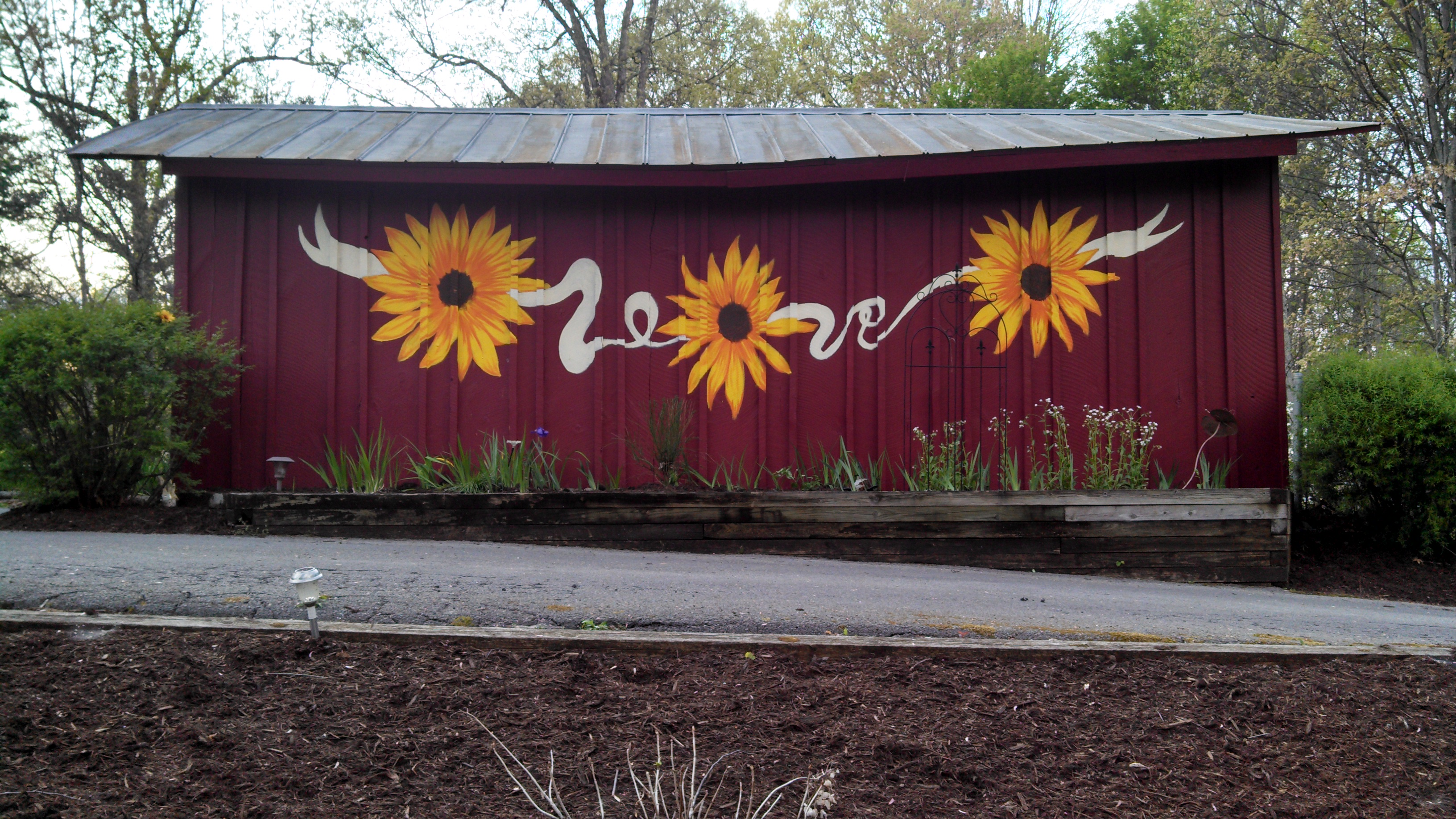 Sunflower Barn Mural