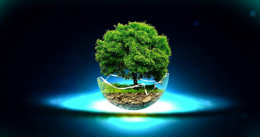 "Image by <a href=""https://pixabay.com/users/skylife81-1555967/?utm_source=link-attribution&amp;utm_medium=referral&amp;utm_campaign=image&amp;utm_content=1183663"">skylife81</a> from <a href=""https://pixabay.com/?utm_source=link-attribution&amp;utm_medium=referral&amp;utm_campaign=image&amp;utm_content=1183663"">Pixabay</a>"
