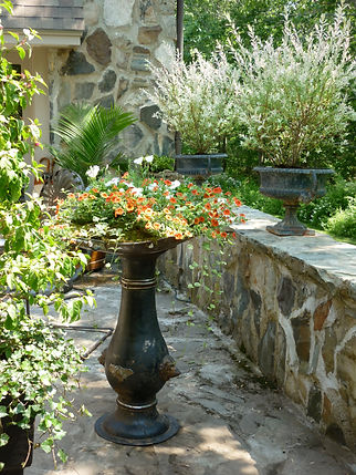 Architectual salvage fountain with flowering plants. Dappled willow shrubs in urns on stone terrace at Rocky Pastures estate