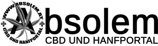 Bsolem Logo