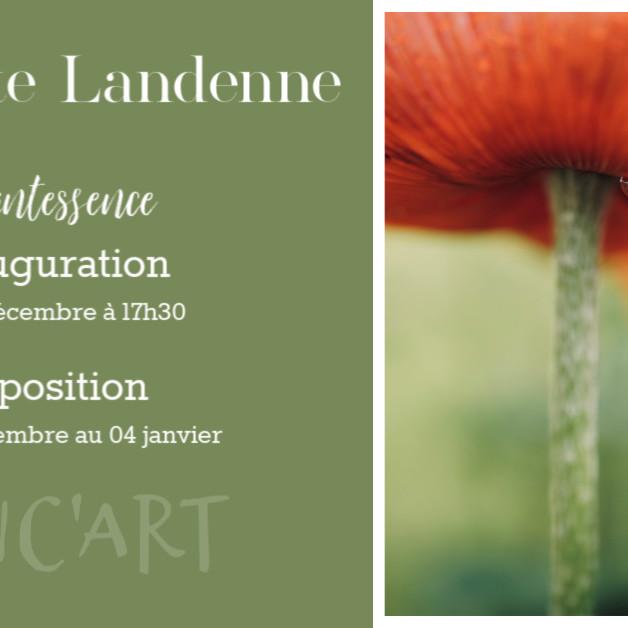 Exposition - Quintessence - Bénédicte Landenne