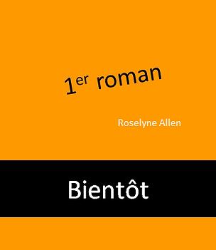 Teasing_1er_roman.PNG