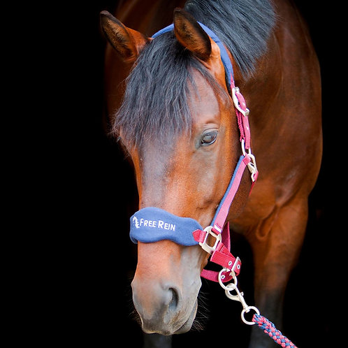 Free Rein Head Collar & Lead Rope -Burgundy & Navy